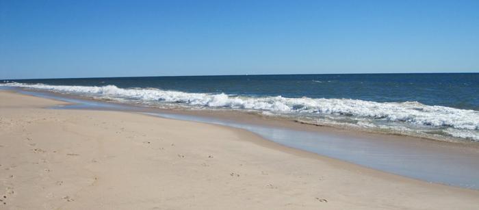 Hamptons-beach
