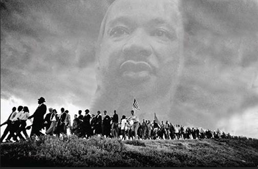Selma3