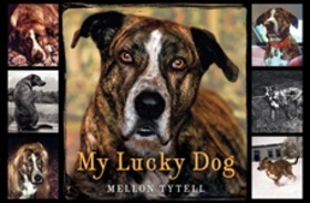 My_lucky_dog_2